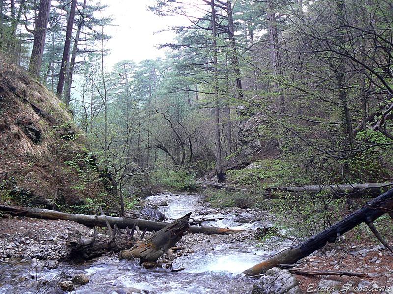 Ущелье Уч-Кош, Крым